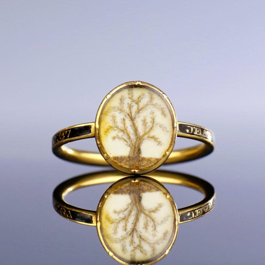 773 Georgian Tree of Life Mourning Ring